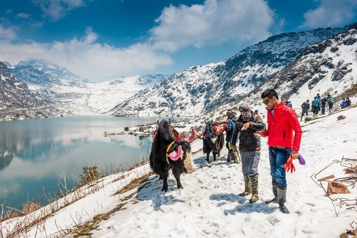 kullu-manali-tour-package-from-chennai